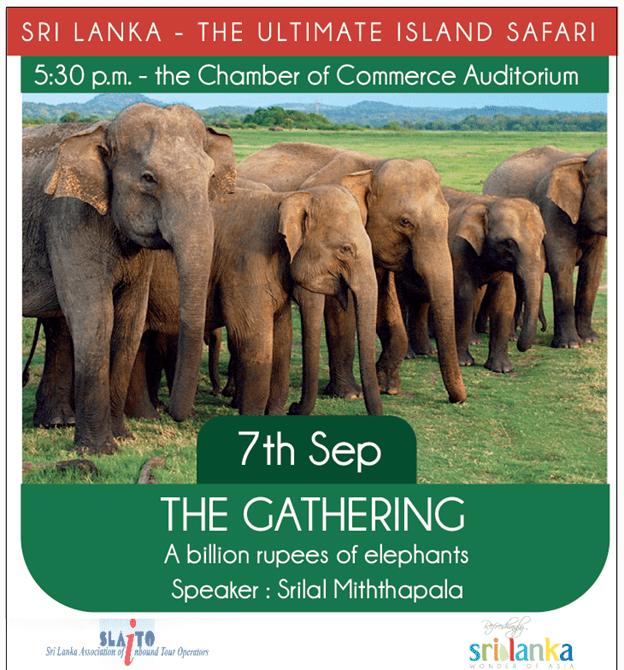 Talk on elephants…entrance free