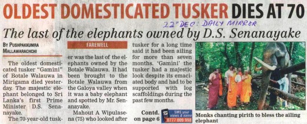 Oldest Captive Elephant In Sri Lanka Dies